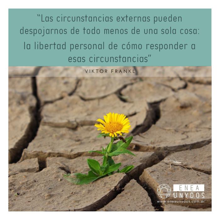 """""""Las circunstancias externas pueden despojarnos de todo menos de una sola cosa: la libertad personal de cómo responder a esas circunstancias"""""""